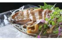 カニ、アワビ、生うに、お寿司付ぜいたく海鮮コース