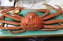 ◆カニプラン◆茹でガニ・焼き・鍋・旬のお刺身